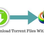 download torrent files with idm