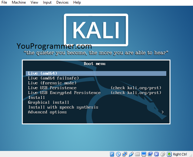 kali linux live boot