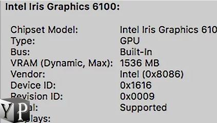 mac graphics card check details