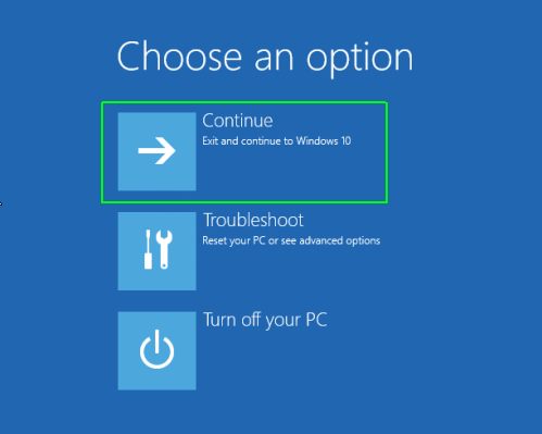 choose option windows 10 after reset